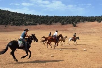 Galoppieren im Mittleren Atlas - Marokko