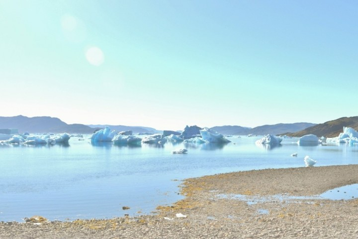 Eisberge - Grönland
