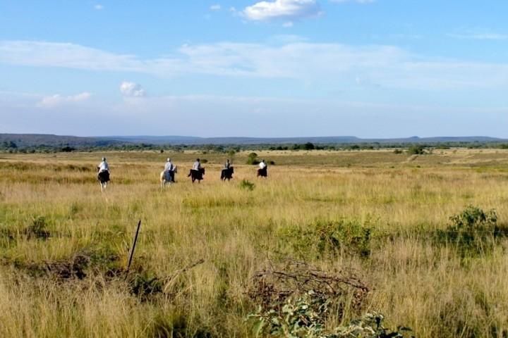 Durch den Busch reiten in Südafrika