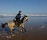 Reitexpedition entlang der Atlantikküste, Marokko