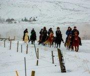 Wanderreiten im Schnee