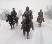 Reiten im Schnee - Island
