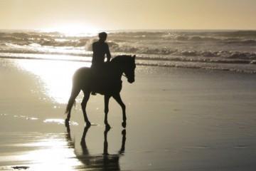 Reiten bei Sonnenuntergang am Strand