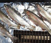 Frischen Fisch grillen in Kanada