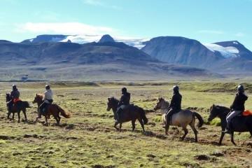 Zwischen Gletschern reiten in Island
