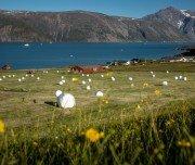 Qassiarsuk in Südgrönland