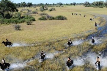 Reiten im Schilf - Okavango Delta