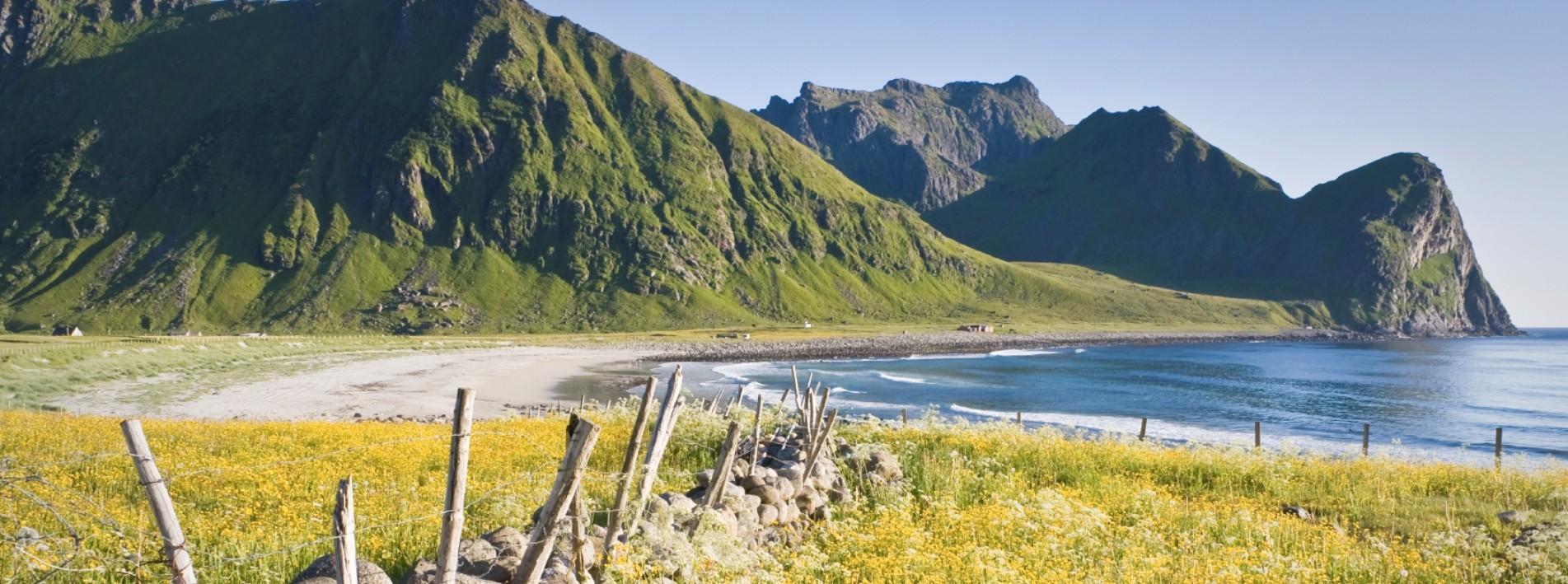 Strand auf Lofoten