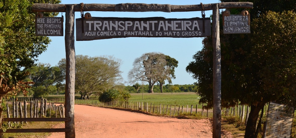 Die Transpantaneira Straße
