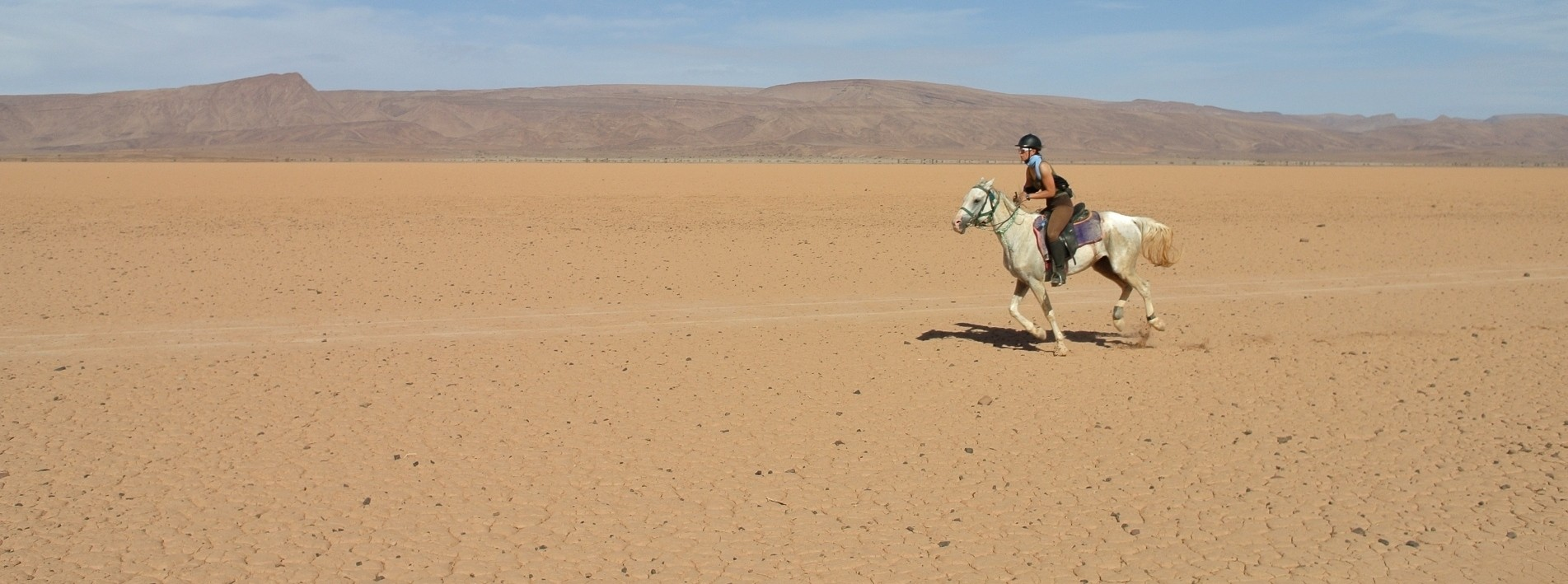 Galoppieren auf weiten Ebenen im Nomadenland, Marokko