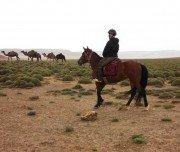 Reiten in Marokko