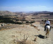 Reiterlebnis mit Besuch der Königsstädte Marokkos