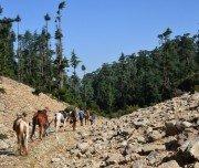 Reitabenteuer im Mittleren Atlas - Marokko