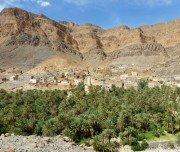 Oase in der Wüste, Marokko