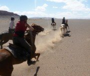 Pferderennen in der Wüste