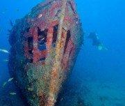 Korallenbewachsene Schiffswracke, Brasilien