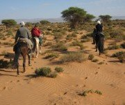 Reiten durch die Wüste, Marokko