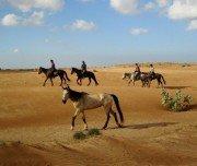 Reiten durch das Hinterland in Marokko