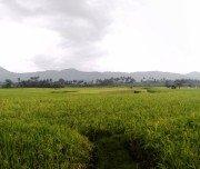 Wunderbare Landschaften auf Sumatra