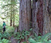 West Coast Trail auf Vancouver Island