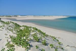 Weißer Sandstrand auf Bazaruto Island