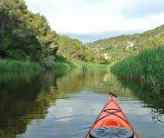 Mit dem Seekajak den Fluss entlang