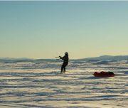 Mit Kite und Pulka durch den Schnee