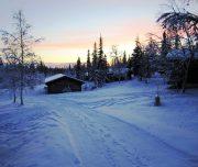 Cabins im verschneiten Schweden