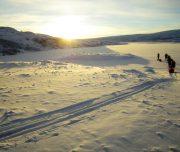 Mit Skiern und Pulka durch Lappland