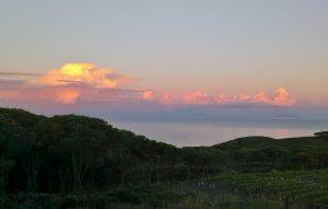 """Aussicht von """"Fattoria delle Ripalte"""" aufs Meer bei Sonnenuntergang"""