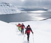 Aufstieg mit Skiern auf Island
