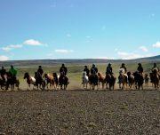 Reiter im Trab durch das Borgarfjördur-Tal